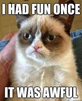 grumpy-cat-w6301